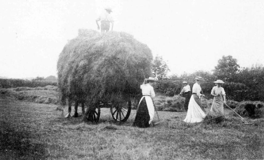 Gardner family collecting hay in School Meadow