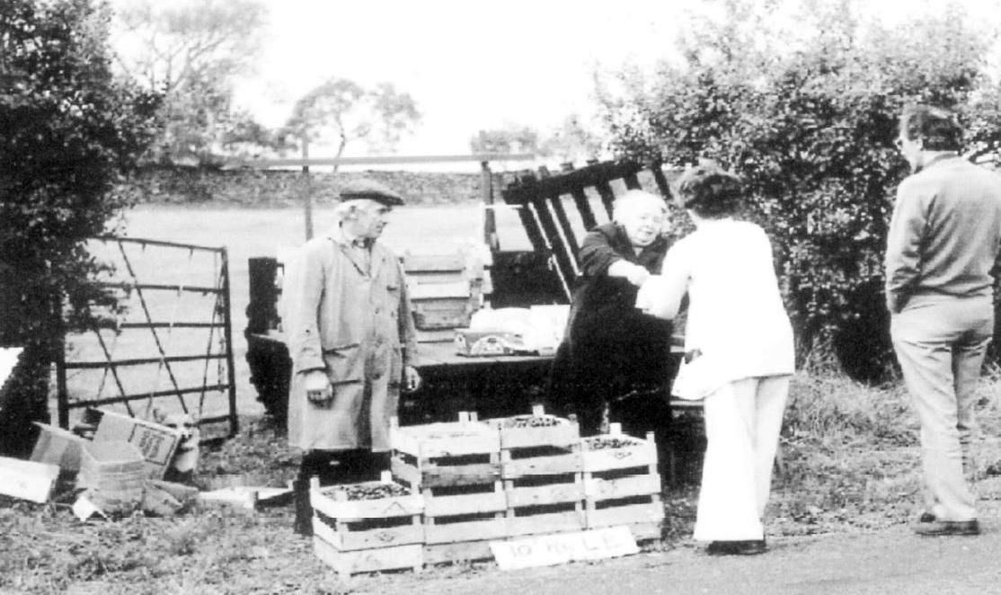 John and Ivy Wilson from Yews, selling damsons at the roadside