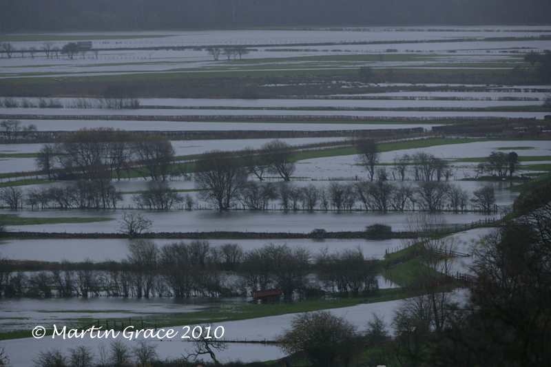 Flooded Lyth Valley November 20 2009 001L